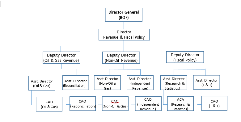 revenue organogram